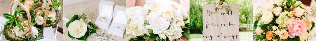 peonies roses
